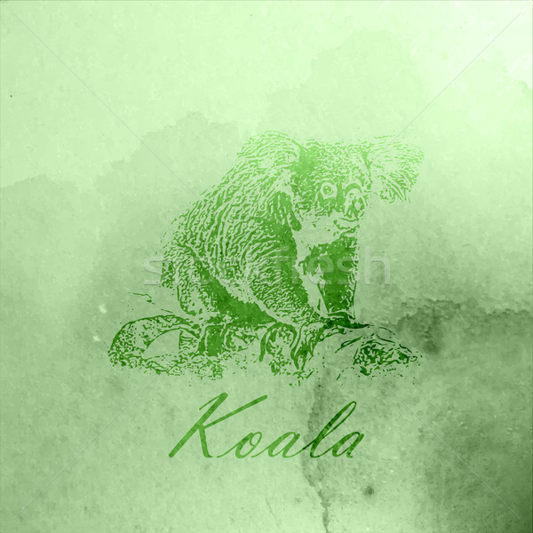 vector vintage illustration of a green watercolor koala bear on the old paper texture Stock photo © maximmmmum