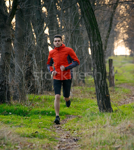 Stock photo: Young Man Running on the Trail in the Wild Forest