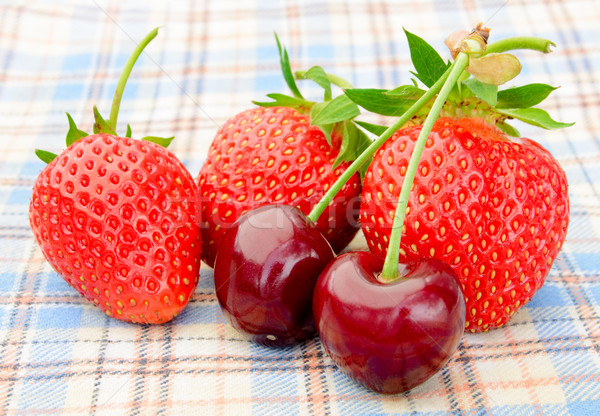 Ripe Sweet Cherries and Strawberries on the Checked Tablecloth Stock photo © maxpro