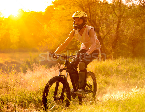 Stock photo: Cyclist Riding the Bike on Trail in the Summer Forest at Sunrise