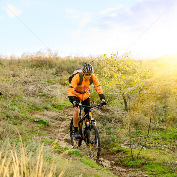 Cyclist Riding the Bike on Morning Mountain Trail Stock photo © maxpro