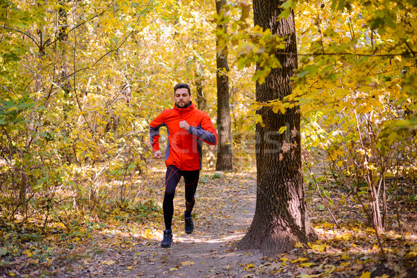 Stock photo: Young Man Running on Sunny Trail in the Beautiful Autumn Oak Forest