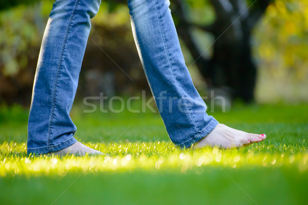 Stock photo: Woman Barefoot Legs on the Green Grass in Garden