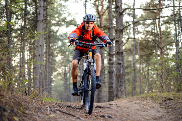 Cyclist Riding the Bike on the Trail in the Forest. Extreme Sport. Stock photo © maxpro