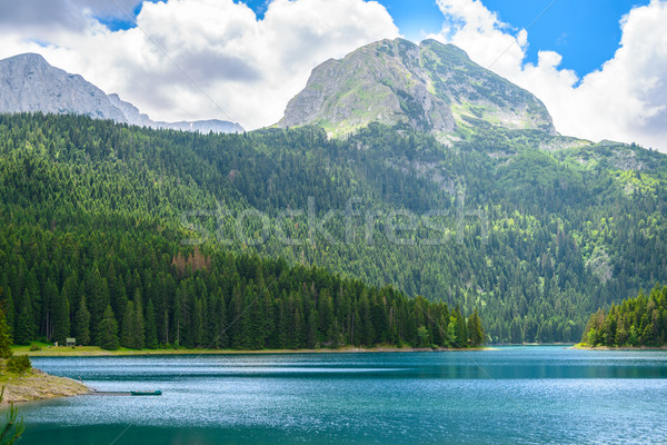 Beautiful Black Lake, Green Forest and Beautiful Mountains in the Morning. National Park Durmitor, M Stock photo © maxpro