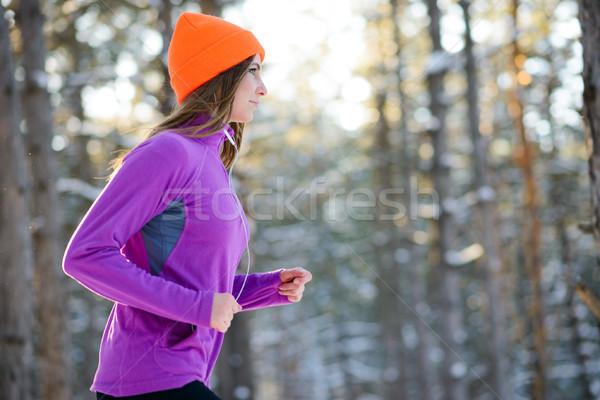 работает красивой зима лес Солнечный Сток-фото © maxpro