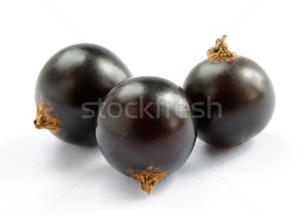 Ripe Black Currants Isolated on White Background Stock photo © maxpro