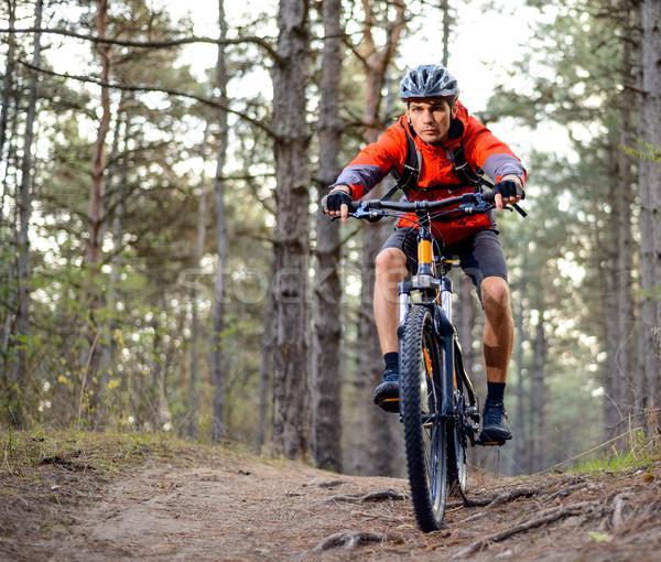 велосипедист верховая езда велосипедов тропе лес Экстрим Сток-фото © maxpro