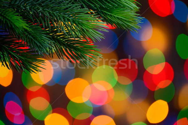 Christmas Background with Fir-tree Branch on the Holiday Lights Background Stock photo © maxpro