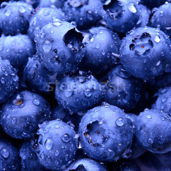 Stock photo: Background of Fresh Ripe Sweet Blueberries Covered with Water Drops