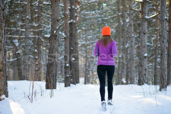 Сток-фото: работает · красивой · зима · лес · Солнечный