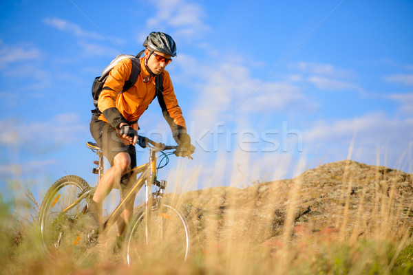 Stock photo: Cyclist Riding the Bike on the Beautiful Mountain Trail