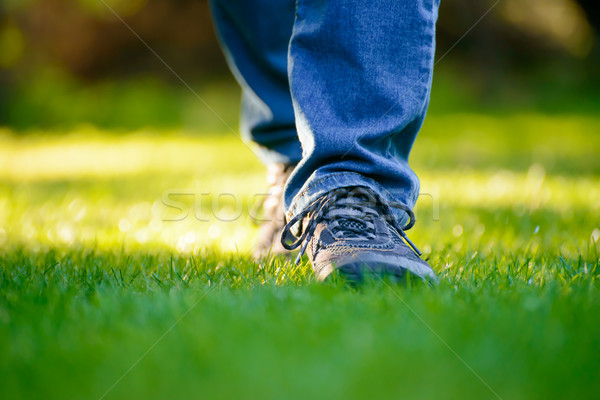 Stock photo: Woman Legs on the Green Grass in Garden