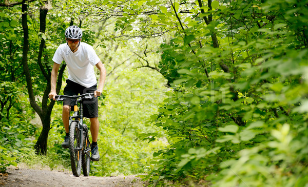 Stock photo: Cyclist Riding the Bike on the Trail in the Forest