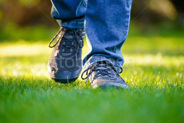 Woman Legs on the Green Grass in Garden Stock photo © maxpro