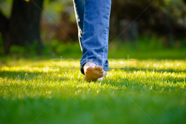 Woman Barefoot Legs on the Green Grass in Garden Stock photo © maxpro