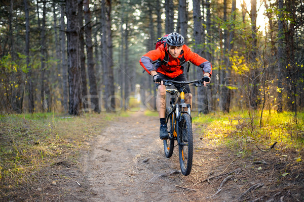 Stock photo: Cyclist Riding the Bike on the Trail in the Forest. Extreme Sport.