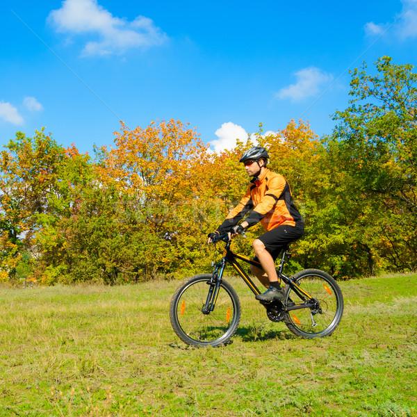 Foto stock: Ciclista · equitação · bicicleta · belo · outono · floresta