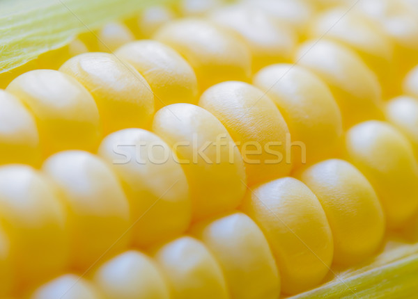 Stock photo: Closeup of Fresh Sweet Ripe Corn Seeds