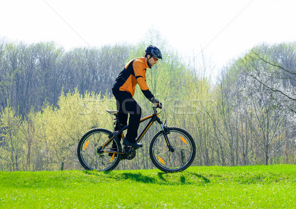 Cyclist Riding the Bike on the Green Meadow Stock photo © maxpro