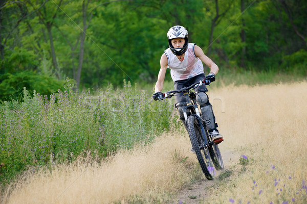 Stock photo: Cyclist Riding the Bike on the Trail in the Beautiful Forest