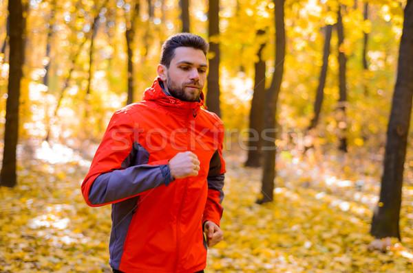 молодым человеком работает Солнечный тропе красивой осень Сток-фото © maxpro