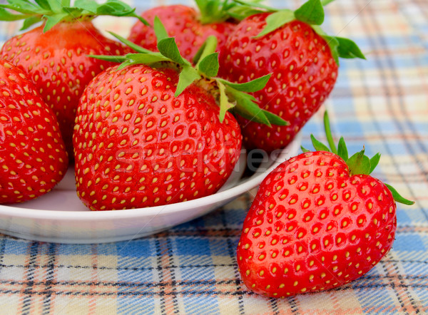 Fresh Strawberries in a White Plate on a Picnic Tablecloth Stock photo © maxpro