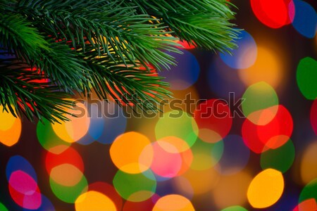 Stock photo: Christmas Ball on the Fir Branch on the Holiday Lights Background