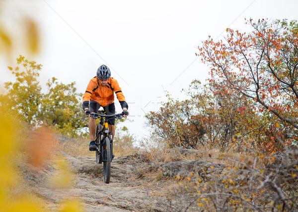 велосипедист верховая езда велосипедов красивой осень горные Сток-фото © maxpro