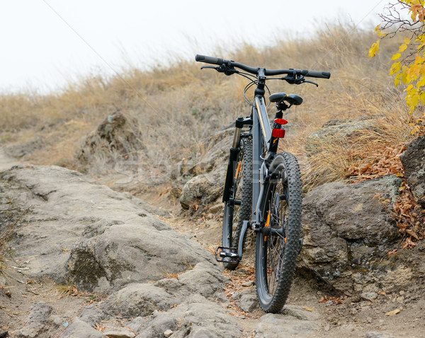 Mountain Bike on the Beautiful Autumn Rocky Trail Stock photo © maxpro