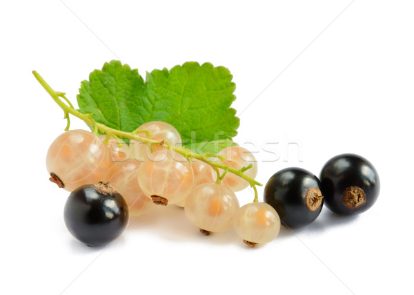 Stock photo: Ripe Black and White Currants with Green Leaf Isolated on White