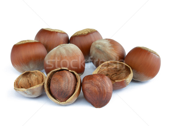 Closeup image of Hazelnuts Isolated on White Background Stock photo © maxpro