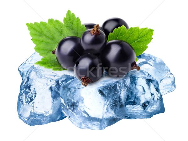 Frozen blackcurrants isolated Stock photo © maxsol7