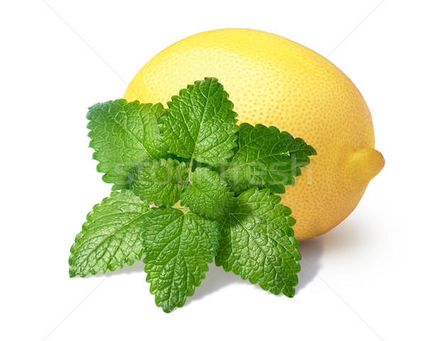 Lemon with mint balm isolated Stock photo © maxsol7