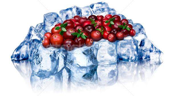 Frozen cranberries isolated Stock photo © maxsol7
