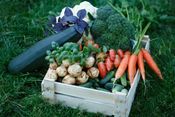 Vegetables harvest Stock photo © maxsol7