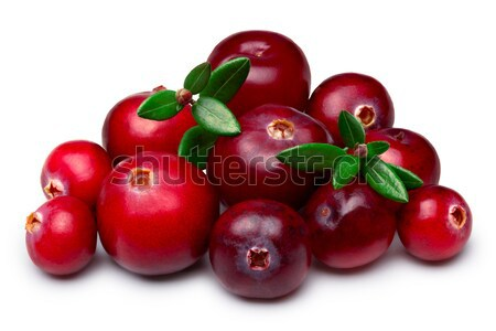 Wild cranberries isolated Stock photo © maxsol7