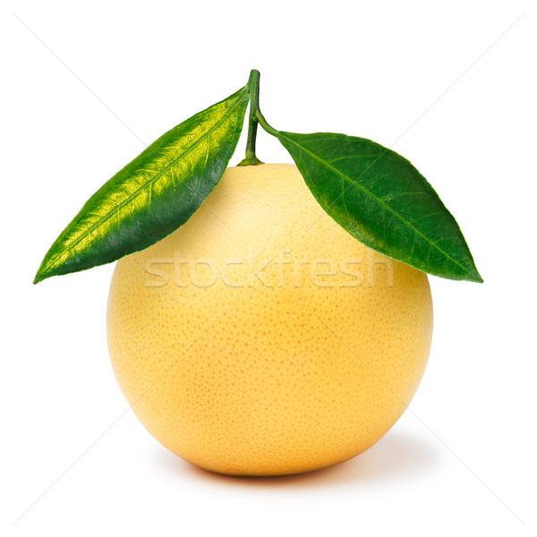 黄色 グレープフルーツ 孤立した 全体 白 ストックフォト © maxsol7