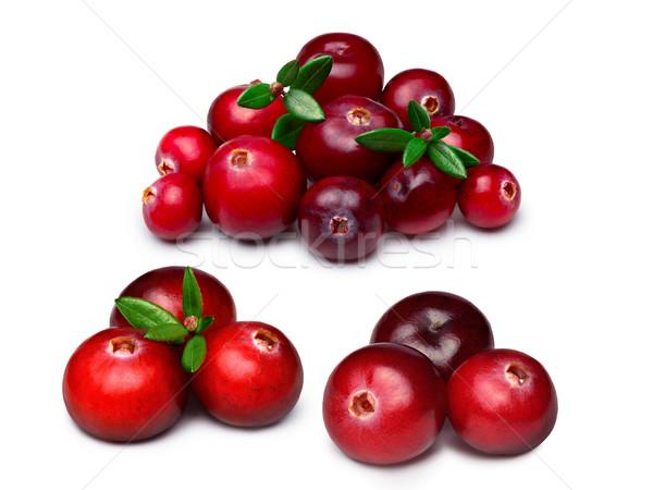 Wild cranberries isolated Stock photo © maxsol7