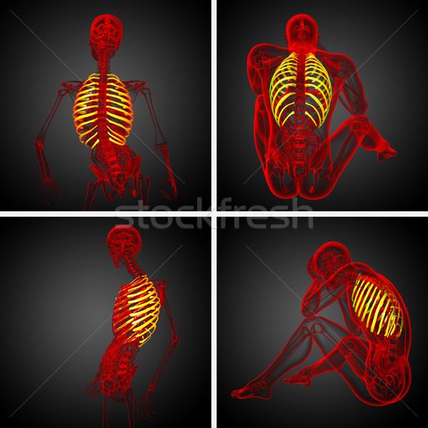 3D レンダリング 医療 実例 人間 ストックフォト © maya2008