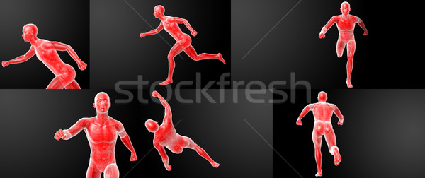 Running human anatomy by X-rays in red  Stock photo © maya2008