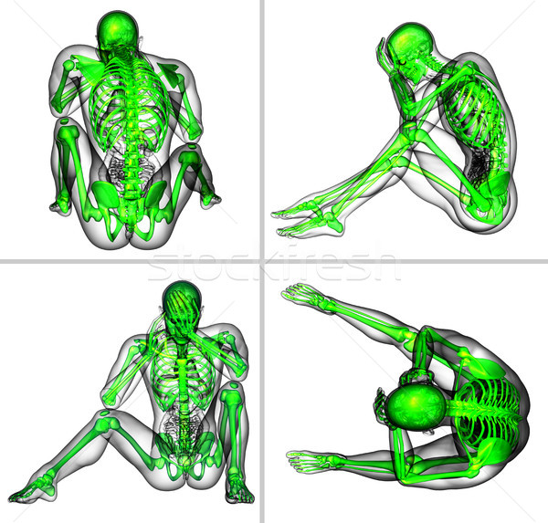 Сток-фото: 3D · медицинской · иллюстрация · человека · скелет