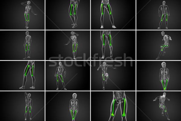 3D médico ilustração osso Foto stock © maya2008