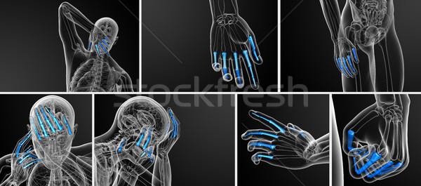3D illustratie menselijke hand Stockfoto © maya2008