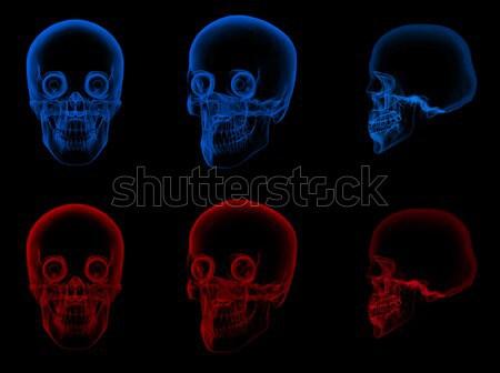 3d rendering illustration of jaw bone Stock photo © maya2008