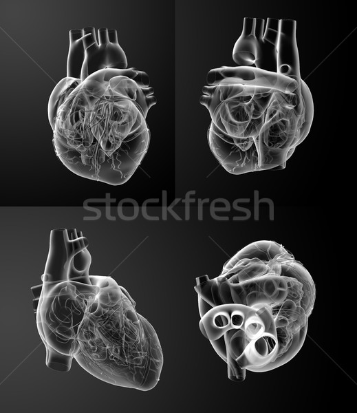 3D rendering of the White heart Stock photo © maya2008