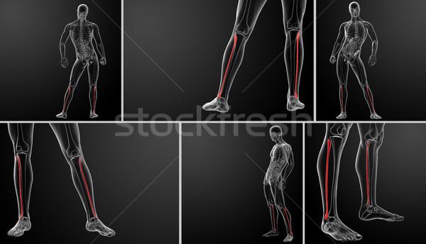 3D ilustração saúde azul vermelho Foto stock © maya2008