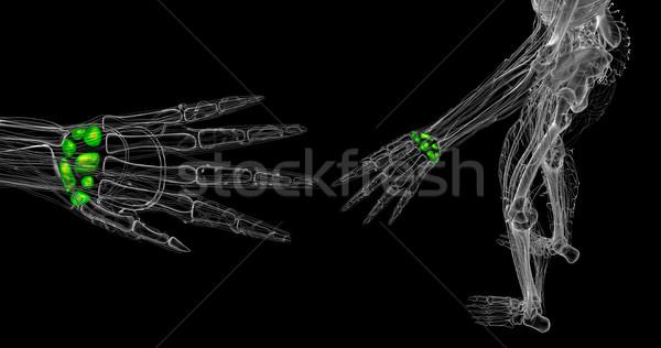 3D render örnek insan kemikleri Stok fotoğraf © maya2008