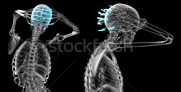 3D illustration humaine main Photo stock © maya2008