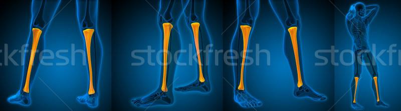 3D medici illustrazione Foto d'archivio © maya2008